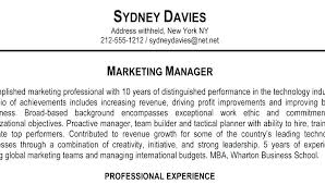 Example Of Profile Summary For Resume Professional Summary Examples ...