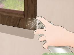 How To Get Rid Of Spiders In Bedroom Decoration