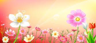 baby pink background designs. Brilliant Designs Pink Flowers On Background And Baby Pink Background Designs H