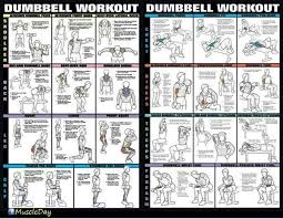 Dumbbell Exercises Chart Printable Dumbbell Workouts For Legs Amtworkout Co