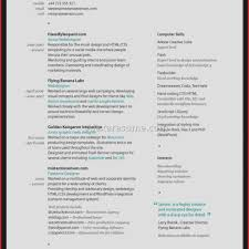 Resume Examples Pinterest Resume Template Graphic Fresh [graphic Design Resume Examples 20