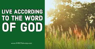 Word Of Nature Live According To The Word Of God South Valley Baptist Church
