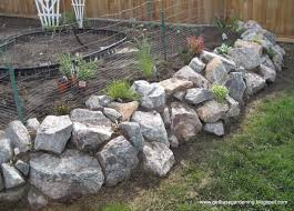 Rock wall done and planted