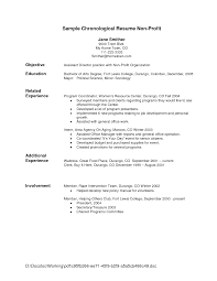 Chronological Order Resume Example