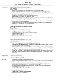 Resume Templates Search Engine Marketing Magnificent Types Of In