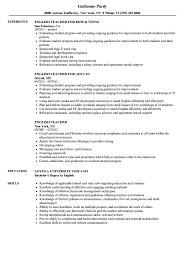 Sample Resume For Online English Teacher Samplelish Teacher Resume Language Cover Letter For Esl Free 19