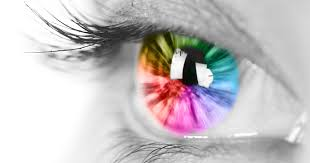 Human Eye Color Chart With Fun Facts