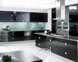 black kitchen cabinets ideas. Steela Accents And Black Kitchen Cabinet Ideas For The Chic Cook Cabinets