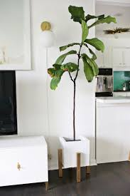 Planters, Modern Planter Stand Crate And Barrel Plant Stand Bullet Planter  Brass Plant Stand With
