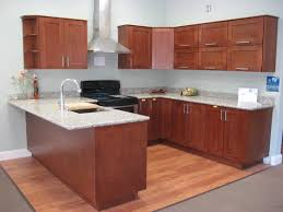 Custom Kitchen Cabinets Nyc Cute Semi Custom Kitchen Cabinets Modern Kitchen New York By
