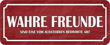 Blechschild Spruch Wahrer Freund Plan B Und Wodka Schild