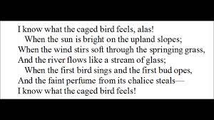 sympathy paul laurence dunbar poem famous american lit i know sympathy paul laurence dunbar poem famous american lit i know why the caged bird sings