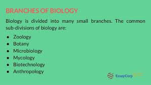 biology assignment help 4 branches of biology