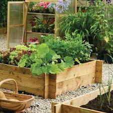 garden wooden raised bed in