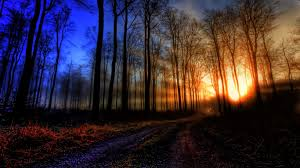 Image result for dawning sunlight