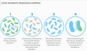 antibiotic overuse why we don t care dr mike sevilla family  antibioticresistance jpg