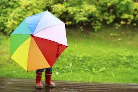 Umbrella Insurance Quote Why Do I Need Umbrella Insurance TrueNorth Companies TrueNorth 29