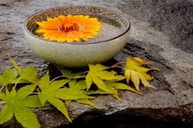 Small Picture Elements of a Zen Garden DoItYourselfcom