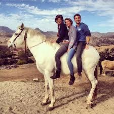 all the pretty horses essay all the pretty horses essay voted body  the pretty horses essay all the pretty horses essay