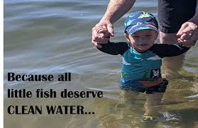 City of Medina, Minnesota - January Medina Clean Waters Fact Sheet ...