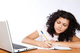 instructions to look for pro essay writers