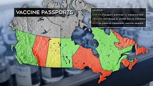 May 02, 2021 · on a canadian radio show, cbc's the house, canada's health minister patty hajdu was asked whether canada would be taking part in a vaccine passport program for international travel, as has been. No Government Vaccine Passport In Ontario Toronto Company Builds App Anyway Ctv News