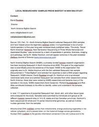 a essay about internet gun control