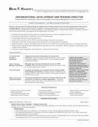 Examples Of Good Cover Letters For Resumes Classy Generic Resume Cover Letter Best Of Resume Cover Letters Examples