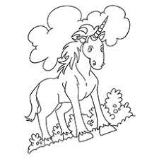 indian unicorn equus inoceros coloring pages