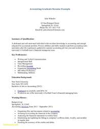 Accounting Cv Examples Resume Template Clerk Sample Inter Cpa
