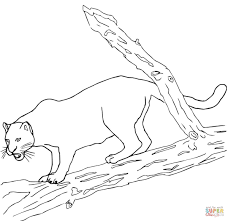 Small Picture Jaguars coloring pages Free Coloring Pages