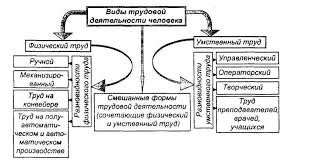 Виды и условия трудовой деятельности человека Виды и условия трудовой деятельности человека
