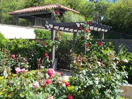 Rose Garden Designs For Small Yard Post
