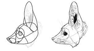 fennec fox drawing. Unique Fox Howtodrawfoxesspeciesfennec  On Fennec Fox Drawing N