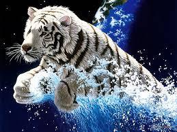 White Tiger Wallpaper kostenloser ...