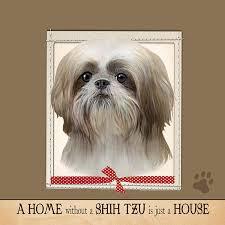 amazon e s pets ultra soft 16 x 16 shih tzu gift pillow pet supplies