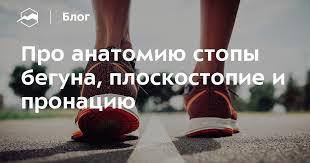 Про анатомию стопы бегуна, плоскостопие и пронацию — Блог ...