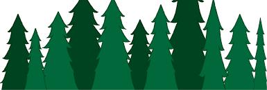 Evergreen Coat Rack DIY Branch Coat Rack Kept Blog 34
