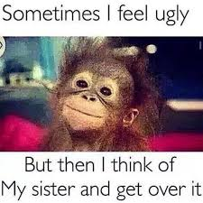Great Tag Your Ugly Sister Humor Funny Sister Memes Sister