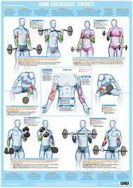 Chest Chart Gym Fitness I Bieganie Chest Muscles Weight Lifting Poster Body
