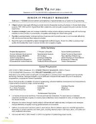 Sample Resume Mba Resume Template Awesome Resume Template Project ...