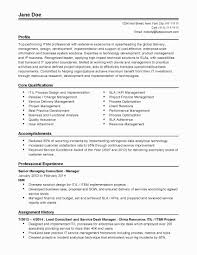 52 Inspirational Sample Resume Summary Statement Awesome Resume