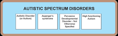 Autism Pdd Nos Aspergers Fact Sheets A Guide To