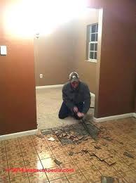 removing vinyl floor tile removing vinyl floor tiles club how to remove vinyl flooring removing vinyl removing vinyl floor