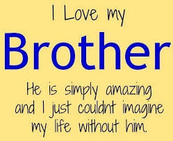 I Love My Brother Quotes Simple Little Brother Quotes QuotesLogy