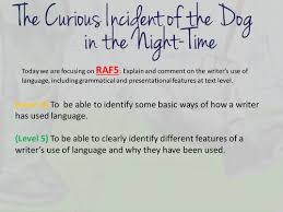 a curious incident of the dog in the night time by njohnson  a curious incident of the dog in the night time by njohnson23 teaching resources tes