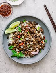 asian ground beef recipes. Exellent Recipes Asian Ground Beef Stir Fry With Recipes