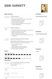 Finance Director Resume Samples Visualcv Resume Samples Database