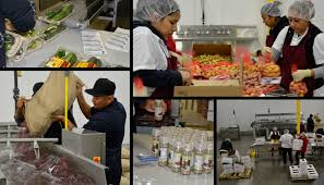 Image result for food processing and packaging