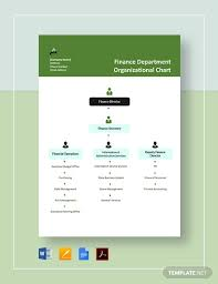 Finance Org Chart 22 Department Chart Templates In Google Docs Word Pages